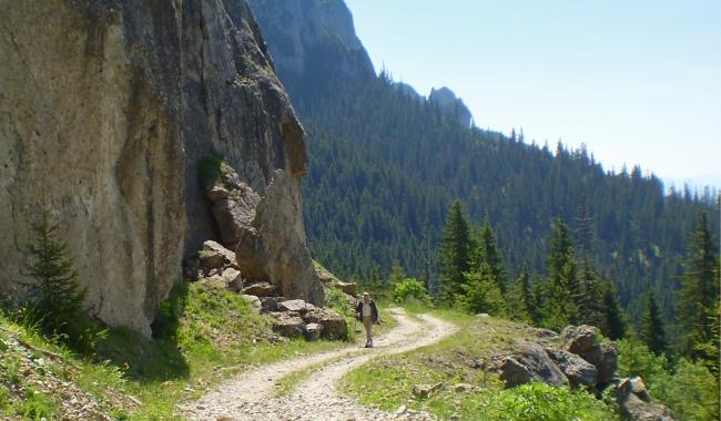 Sursa foto: www.101stiri.ro/ Pe drumuri de munte... Ceahlău/ Tatiana TĂNASĂ