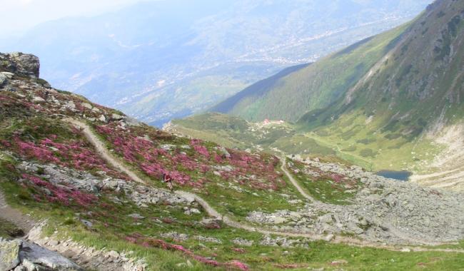Sursa foto: www.101stiri.ro-Elena VERENCA  Lacul Iezer, Munții Rodnei