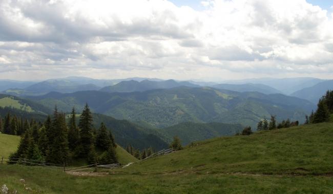 Sursa foto: Elena VERENCA/ Munții Rarău - Giumalău