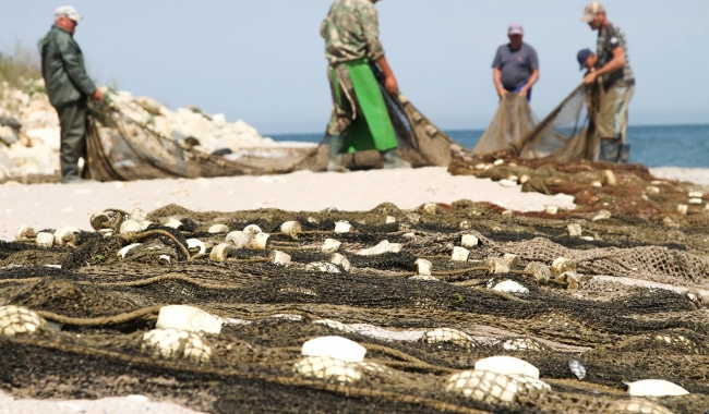 Sursa foto. www.101stiri.ro-Sorin DANIELCIUC  Pescari la Costinești