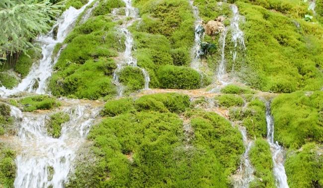 Sursa foto: www.101stiri.ro-Sorin DANIELCIUC  Cascada Pisoaia, Munții Apuseni