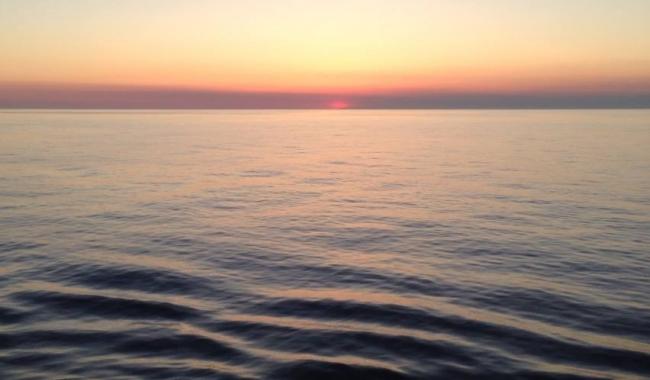 Sursa foto: www.101stiri.ro-Stelian CARAGICU