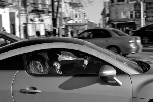 Oameni de carton în oraşe de beton