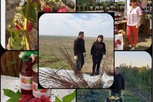 """ZMEURĂ DIN """"DUMBRAVA"""" MINUNATĂ DE LA COBADIN"""